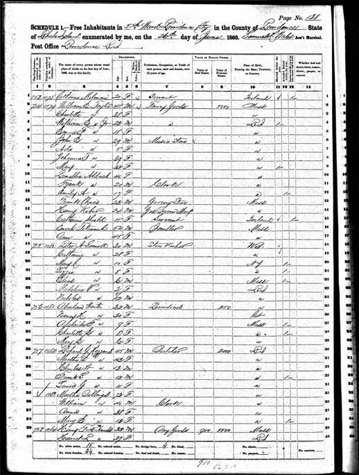 1860 United States Federal Census - Peter Aloysius Sinnott Sr.jpg