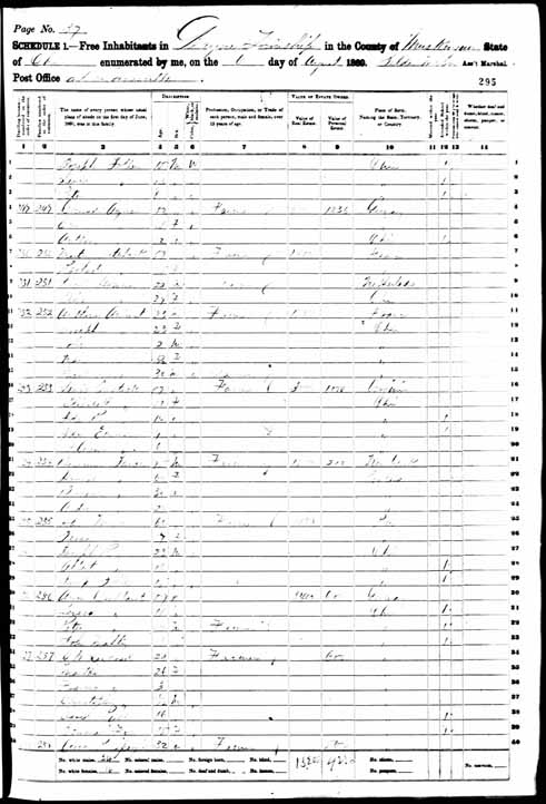 1860 United States Federal Census - Peter Soller.jpg