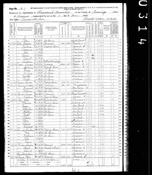 1870 United States Federal Census - Barbara Unknown.jpg