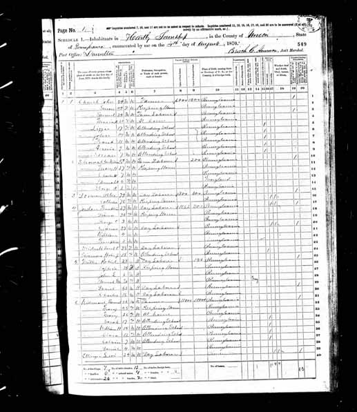1870 United States Federal Census - Calvin R Weidensaul.jpg
